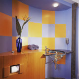 Ultra Modern Bathroom Photographic Print