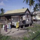 Springlands (Skeldon), Berbice, Guyana Photographic Print