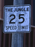 The Jungle 25 Mph Street Sign Photographic Print by Harvey Schwartz