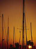 Sunset and Boat Masts, Ventura Harbor, CA Photographic Print by Jeff Greenberg