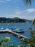 Trois Islets, Martinique Photographic Print