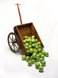 Cart with Apples Spilling Out Photographic Print by Howard Sokol