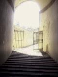 Boboli Gardens, Florence, Italy Photographic Print