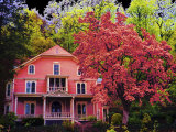 A Pink House in the Wilderness Photographic Print