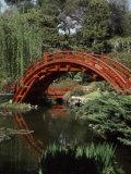 Moon Bridge Japanese Garden Huntington Botanical Gardens San Marino, California, USA Photographic Print