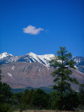Snow-Capped Mountains, AZ Photographic Print by James Lemass