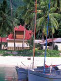 Colorful Sailboats at Harbor, Seychelles Photographic Print by Nik Wheeler
