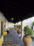 Tourist on Terrace with Striped Cobblestone Floor and Planters, Portugal Photographic Print by John & Lisa Merrill
