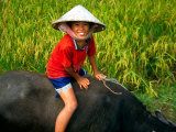 Boy Riding Water Buffalo, Mekong Delta, Vietnam Photographie par Keren Su