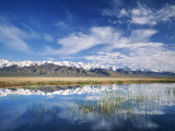 Ruby Mountains and Slough along Franklin Lake, UX Ranch, Great Basin, Nevada, USA Photographic Print by Scott T. Smith