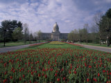Tulips of State Capital Building, Frankfurt, Kentucky, USA Photographic Print by Adam Jones