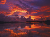 Dawn at Nine Mile Pond, Everglades National Park, Florida, USA Photographic Print by Rob Tilley