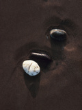 Three Pebbles on Sand Photographic Print