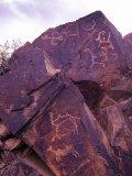 Petroglyphs in Gurvansaikhan National Park, Gobi Desert, Mongolia Photographic Print by Gavriel Jecan