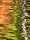 Refections of Fall Foliage and Birch Trees in Pond, Acadia National Park, Maine, USA Photographic Print by Joanne Wells