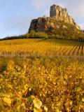 Roche de Solutre above Vineyards, France Photographic Print by Lisa S. Engelbrecht