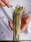 Chef Holding Pasta Over Pot Fotografisk tryk af Howard Sokol