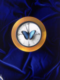Butterfly on Top of Clock Photographic Print by Michelle Joyce