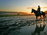 An Unidentified Horse and Rider on the Track at Sunrise at Belmont Park Photographie