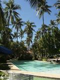 A Swimming Pool Reprodukcja zdjęcia