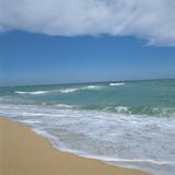 Sand on a Beach Reprodukcja zdjęcia