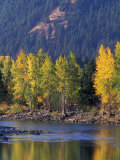 Autumn Color on the Methow River, Washington, USA Photographic Print by William Sutton