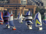 Duck Dodge Sailboat Race, Lake Union, Seattle, Washington, USA Photographic Print by William Sutton