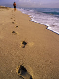 Male Beachcomber, Footprints in the Sand Photographic Print by Jeff Greenberg