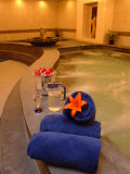 Luxury Treatment at the St. Regis Hotel Pool and Spa Photographic Print by Richard Nowitz