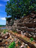 Exterior Walls (1100-1400 AD), Nan Douwas, Nan Madol, Micronesia Photographic Print by John Elk III
