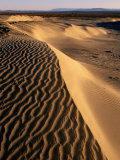 Beach Dune, Bahia De Santa Maria, San Quintin, Mexico Photographic Print by John Elk III
