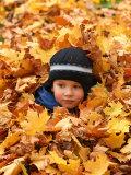 Child Playing in Leaves in Kadriorg Park, Tallinn, Estonia Photographie par Jonathan Smith
