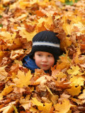 Child Playing in Leaves in Kadriorg Park, Tallinn, Estonia Photographic Print by Jonathan Smith