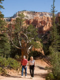 A Couple Walks Along a Path in Bryce Canyon Photographic Print by Taylor S. Kennedy