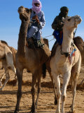 Two Taureg Men on Camels at Sahara Festival, Douz, Tunisia Photographic Print by Pershouse Craig