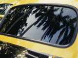 Reflections of Palm Trees in the Window of a Taxi Photographic Print