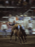 A Cowboy Rides a Bucking Bronco During a Rodeo, Steamboat Springs, Colorado Photographic Print by Taylor S. Kennedy