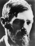 D H Lawrence English Novelist Photographic Print