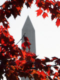 The Washington Monument Surrounded by the Brilliant Colored Leaves Photographic Print by Ron Edmonds