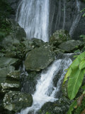 A Waterfall in El Yunque, Puerto Rico Photographic Print by Taylor S. Kennedy