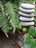Natural Sculpture Photographic Print by Sunniva Harte
