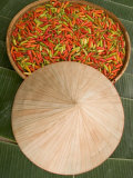 Thai Chile Peppers and Traditional Hat, Isan Region, Thailand Photographic Print by Gavriel Jecan