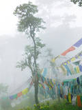Praying Flags in the Dochula Pass, Between Wangdi and Thimphu, Bhutan Photographic Print by Keren Su