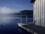 A Woman Swims in a Lake on an Early Morning Summer Day, Quebec, Canada Photographic Print by Taylor S. Kennedy