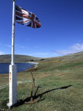 Union Jack British Flag, Falkland Islands Photographic Print by Holger Leue