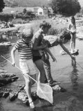 Group of Children Fishing with Nets in a Country Stream Photographic Print