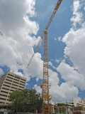Construction Crane, Florida, USA Photographic Print by David M. Dennis