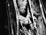 Divinity, Carved Stone from the Temple Ta Prohm and Angkor in Cambogia Photographic Print