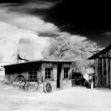 Desert Queen Ranch, Joshua Tree National Park, California, USA Photographic Print by Janell Davidson
