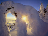 Sunset Thru the Snowghosts, Big Mountain, Whitefish, Montana, USA Lámina fotográfica por Chuck Haney